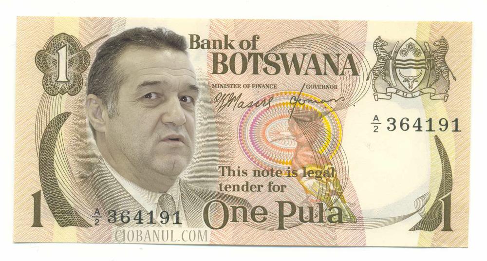 Forex Trading Botswana
