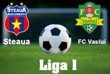 Avancronica Steaua - FC Vaslui