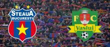 Bilete online pentru Steaua - FC Vaslui
