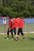 Steaua-Ujpest, antrenament